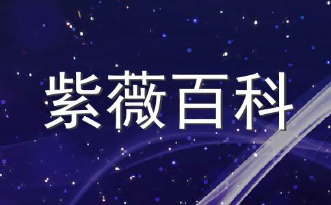 紫微看主星们的颜值排名