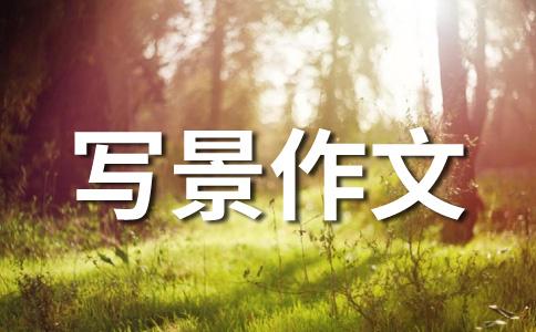 风景优美的南胡公园