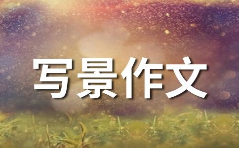"""七彩之""""家"""""""