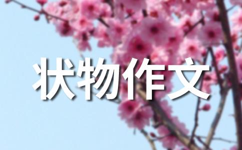 春景400字作文